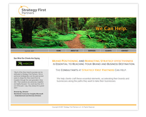 Strategy First Partners Website